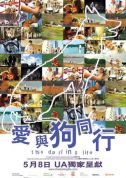 《爱与狗同行 This Darling Life》(2008)