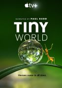 《小小世界 Tiny World》(2020)