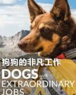 《狗狗的非凡工作 Dogs with Extraordinary Jobs Season》(2019)