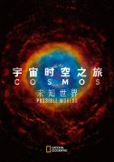 《宇宙时空之旅:潜在的新世界 Cosmos: Possible Worlds》(2019)
