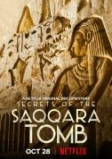 《塞加拉陵墓揭秘 Secrets of the Saqqara Tomb》(2020)