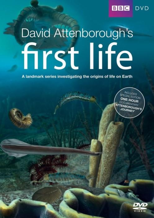 《生命的起源》BBC纪录片