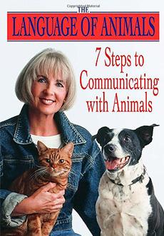 动物沟通七步法-下载